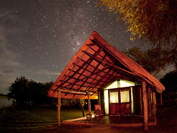Safari & Beach Exploration - Star-studded skies