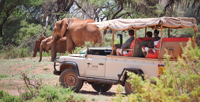 Where to go in Africa in February - Samburu National Reserve