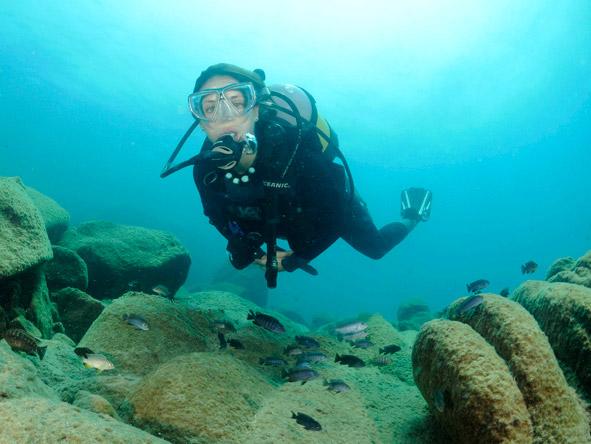 Mvuu & Kaya Mawa Adventure - Scuba diving