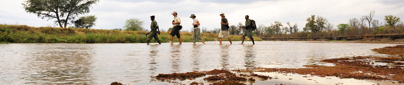 Zambian Walking Safari Adventure
