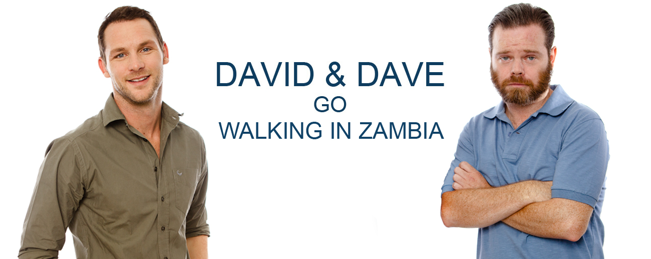 David & Dave go walking in Zambia