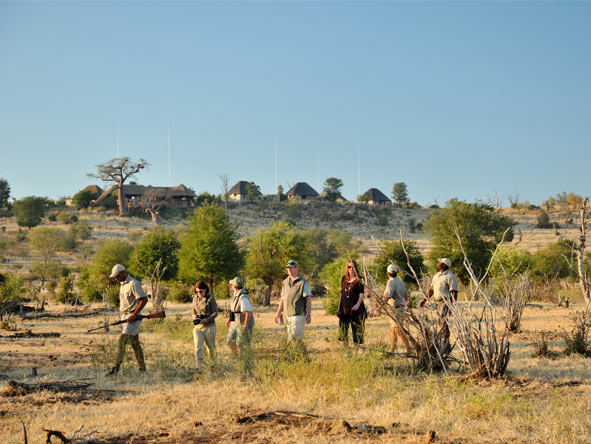 Ngoma Safari Lodge - Morning walking safaris