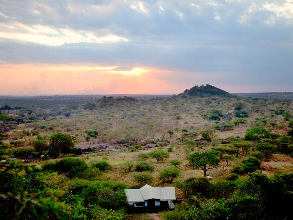Scenic Tanzania Sky Safari - Prime location