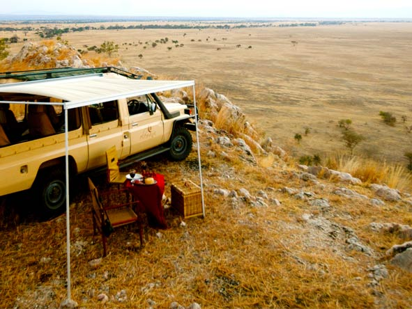 Scenic Tanzania Sky Safari - Game drives