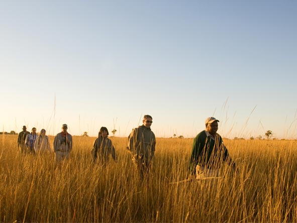 Family Journey through Botswana - Walking safaris