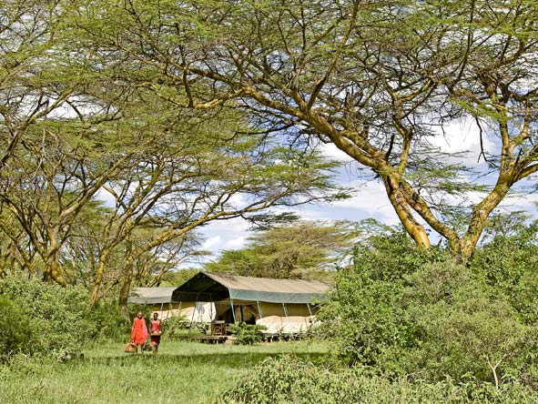 Magnificent Amboseli & Mara Retreat - Classic tented camps