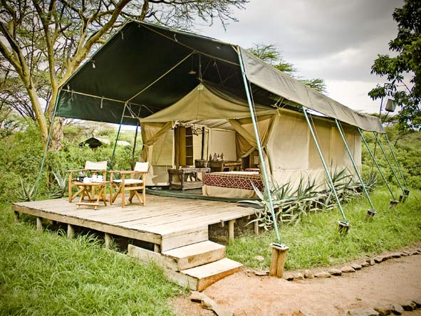 Magnificent Amboseli & Mara Retreat - Small & intimate