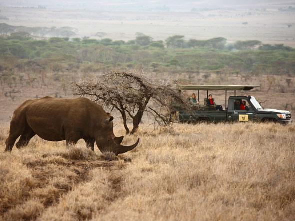 Wilderness Retreat Flying Safari - Great game viewing