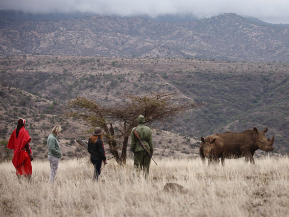 Wilderness Retreat Flying Safari - Guided walking safaris