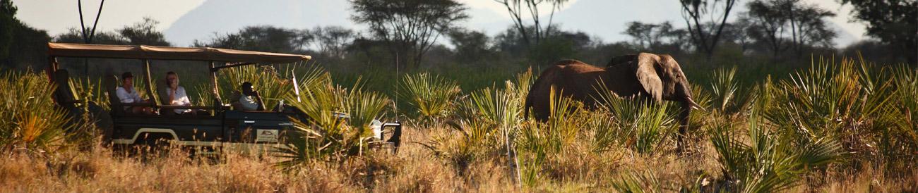 Lavish Getaway Flying Safari