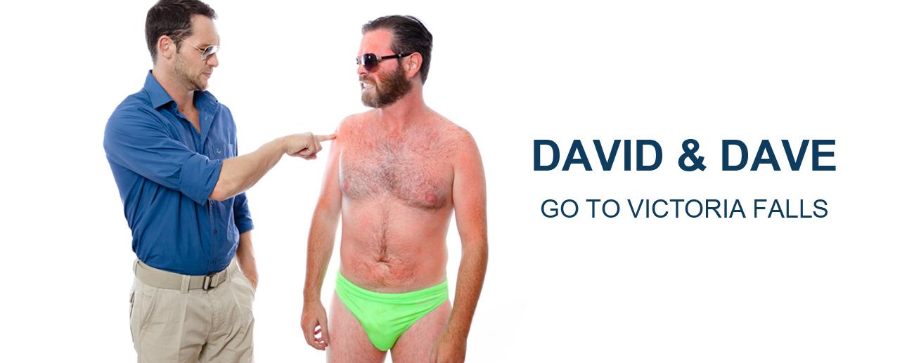 David & Dave Vic Falls - banner