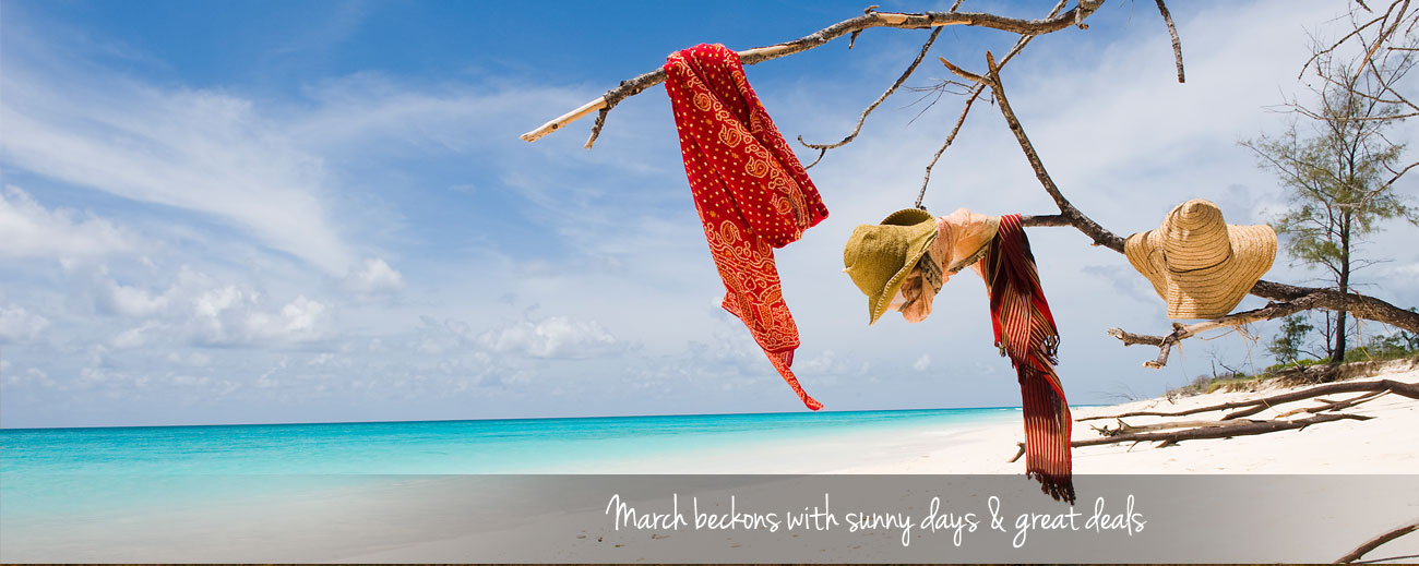 Where to Go in Africa in March - blog banner