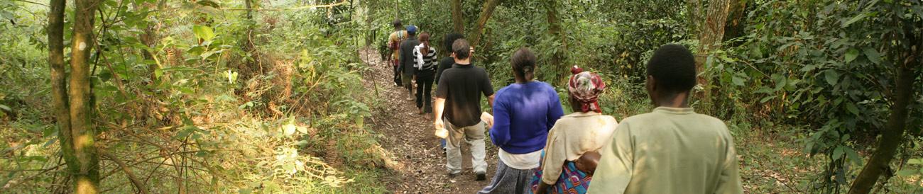 Gorilla, Culture & Wildlife Fly-in Safari