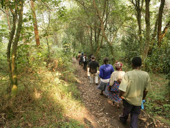 Gorilla, Culture & Wildlife Fly-in Safari - Community partnership & involvement