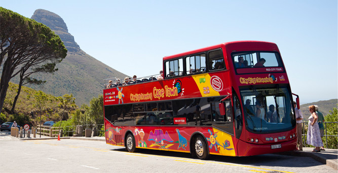 Insider Tips for Going Up Table Mountain Red Bus
