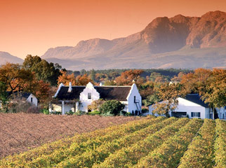 How to Combine South Africa's Favourite Destinations Winelands 2