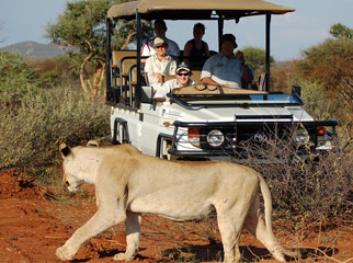 How to Combine South Africa's Favourite Destinations Madikwe