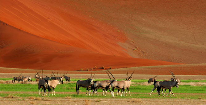 Where to Go inAfrica in April Namibia