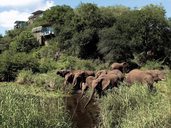 Deluxe Kruger & Seychelles Experience