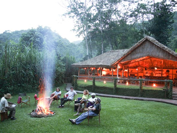 Gorilla Forest Camp