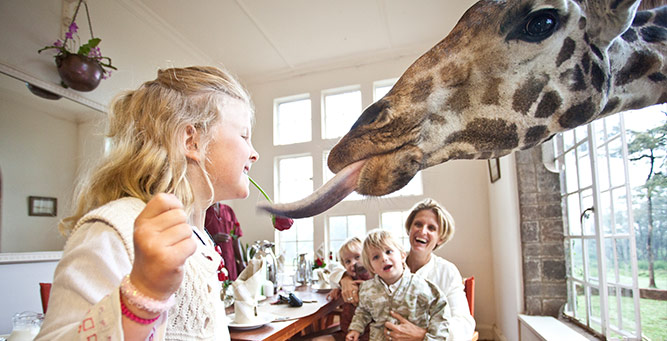 5 Bucket List Animal Encounters for Families Giraffe 2