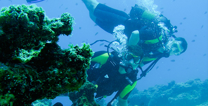 The Ultimate African Water Sports Bucket list Dive