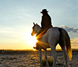 Top 10 Riding Adventures In Africa - Similar