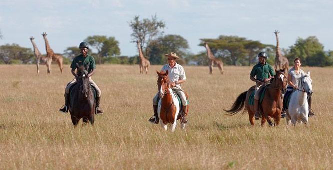 Top 10 Riding Adventures In Africa - Singita Faru Faru