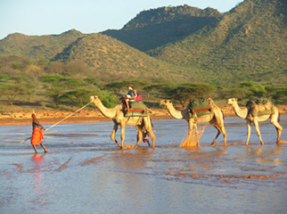 Top 10 Riding Adventures In Africa - Samburu Camel 2