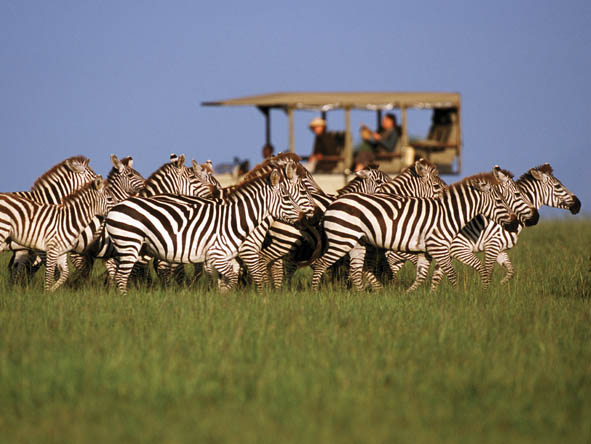 East Africa Family Safari