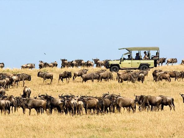 Tanzania Family 1