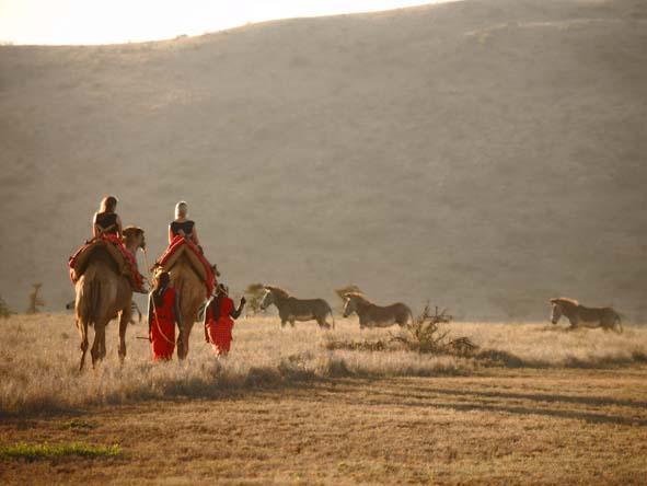 Kenya Luxury Safari 5