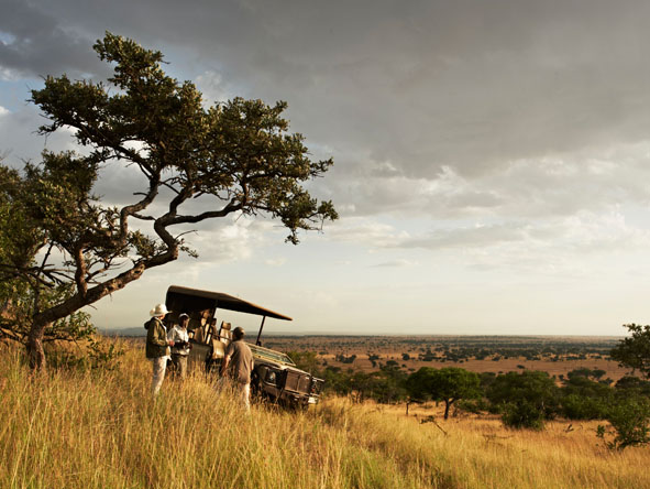 Tanzania Luxury Safari 2