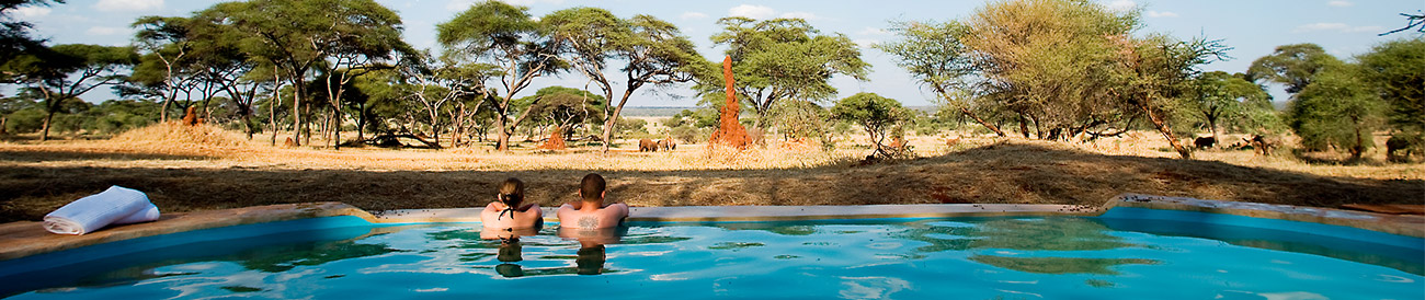 Tanzania Honeymoon Banner