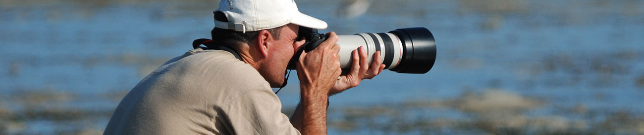Blog categories - Photography