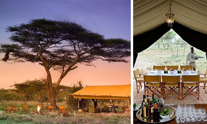 Africa on a Plate - Serengeti Under Canvas