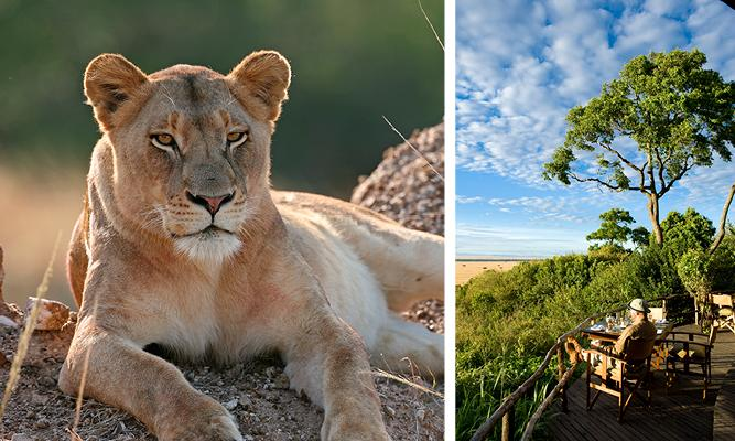 Where to Go in Africa in July - Mara