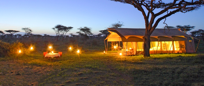 Luxury Mobile Safari Experience