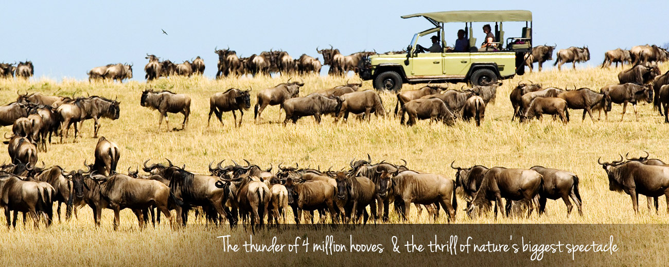 What You Didn't Know about the Great Migration Banner