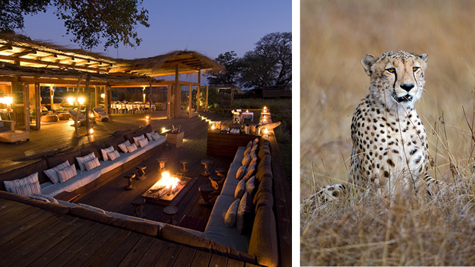 July: Book now for... Zambia