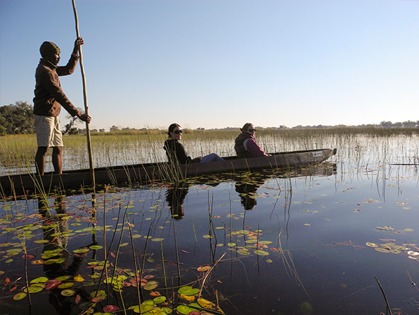 Classic Botswana Explorer