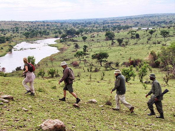 serian migration - walks