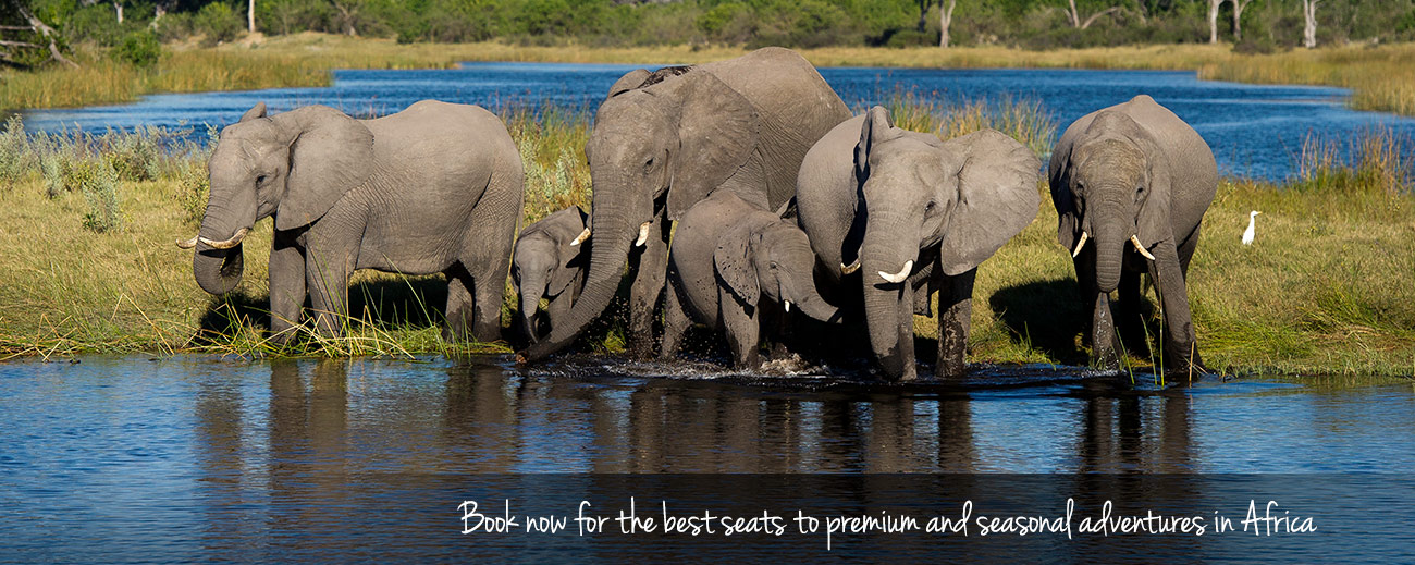July & August: Book now for... Tanzania Migration 2