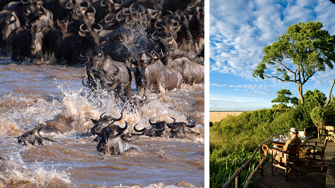 Best African Safari Tours: Our Top 10 Picks