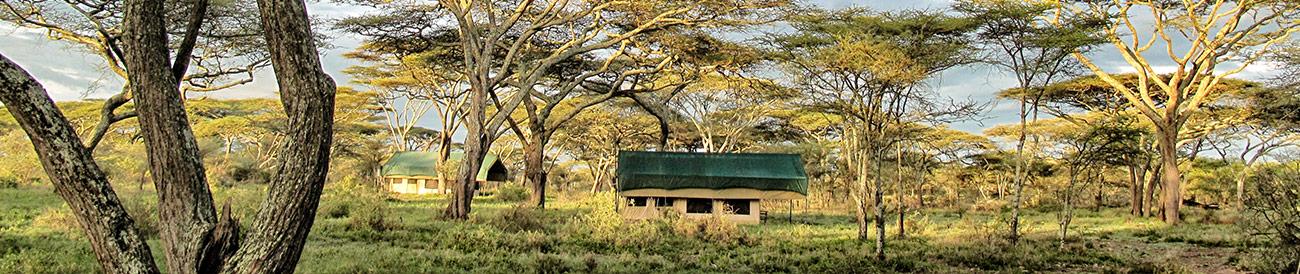 Kusini Serian Serengeti Mobile - banner