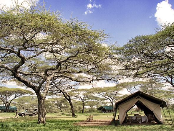 Kusini Serian Serengeti Mobile - tent