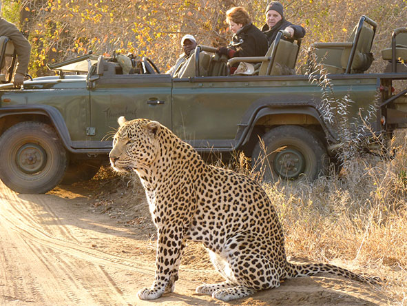 Kruger &  Mauritian Family Adventure - Gallery 2