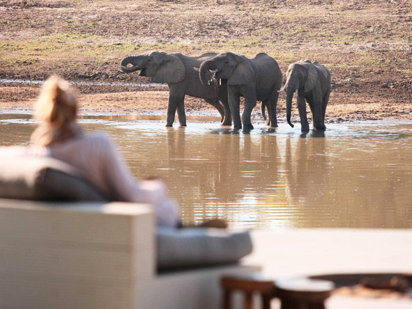 Game viewing at Chinzombo