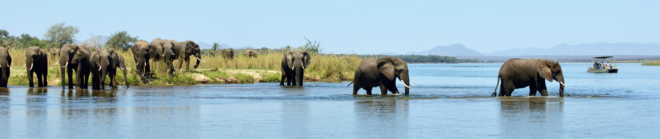 Authentic Botswana & Zambian Adventure