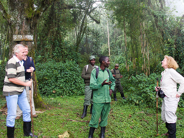 Rwanda Gorilla Encounter - Gallery 10